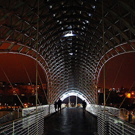 Peace Bridge, Tbilisi, Republic of Georgia by Andie Andros - Buildings & Architecture Bridges & Suspended Structures ( the viewing deck, tbilisi, georgia, bridge )
