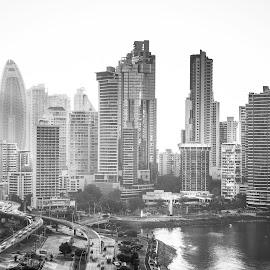 Panama Rebuilt by Alejo Cedeno - Buildings & Architecture Office Buildings & Hotels ( panama, highway, balboa, offices, bay, avenue, buildings, paitilla, city )