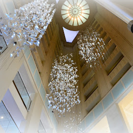 Breathtaking Ceiling by Lorraine D.  Heaney - Buildings & Architecture Architectural Detail