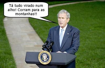 bush_conselho