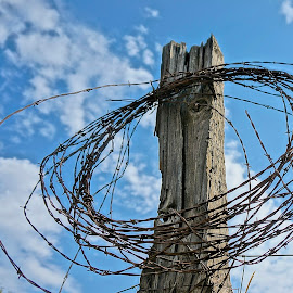The Wire by Barbara Brock - Artistic Objects Industrial Objects ( cloudy sky, fencing, western usa, wire, barbed wire )