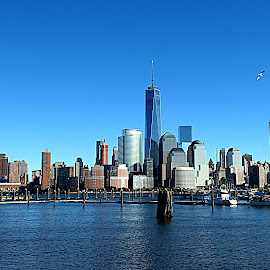 New York City by Jose De La Cruz - Buildings & Architecture Architectural Detail ( new york city )