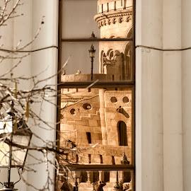 by Vladimir Jablanov - City,  Street & Park  Vistas