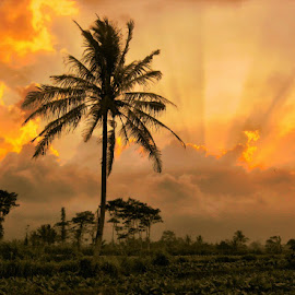 by Hendro Susilo Antonius - Landscapes Sunsets & Sunrises