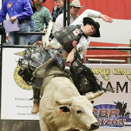 Rank Ride by Cindy Hicks-Butler - Sports & Fitness Rodeo/Bull Riding