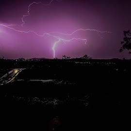 Purple Lightning by Whittney Maree - Landscapes Weather ( thunder, lightning, purple, night, storm, rain )