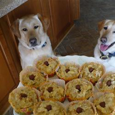 Pup-Cakes