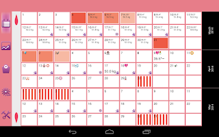 Screenshot of WomanLog Calendar