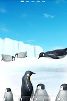 Screenshot of Penguin Live Wallpaper Trial