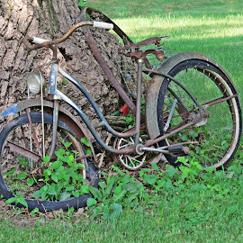 Antique Bicycle  by Cindy Cooper Houser - Transportation Bicycles ( bicycles, bike, bikes, ornament, transportation, antique, bicycle,  )