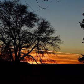 Sunet silhouette. by Denton Thaves - Landscapes Sunsets & Sunrises ( sunset )
