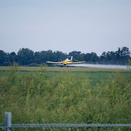 Yellow crop duster airplane flying low over a field as it sprays by Stretch Clendennen - Transportation Airplanes ( farm, field, flying, flight, spray, plane, airplane, pilot, aircraft, agriculture, crop duster )