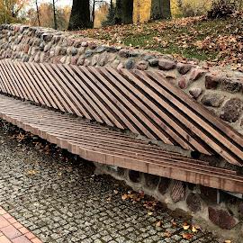 Wet Garden Seat by Vytautas Paliulis - City,  Street & Park  Vistas ( vertical lines, pwc )