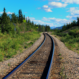 Casc Train Block - Alaska by Dave Skorupski - Transportation Railway Tracks ( clouds, rails, alaska, track, stone, tracks, sign, sky, tree, rail, train, cloud, trees, stones, trains )