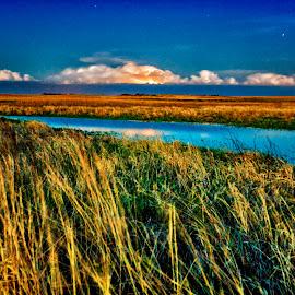Lightning Prairie by Ian Van Schepen - Landscapes Prairies, Meadows & Fields ( water, iowa, midwest, landscape, storm, prairie, dusk, rural, lightning, blue sky, stars, creek, long exposure, evening )