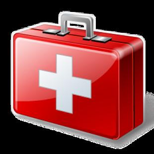 red cross cpr manual download
