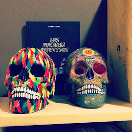 Colored Skulls by Theo Iorga - Artistic Objects Furniture