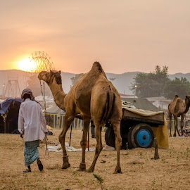 by Sharath Pillai - Landscapes Travel
