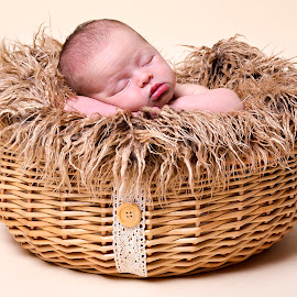 Adorabile by Ashley Ide - Babies & Children Babies ( newborn photography, baby photography, newborns )