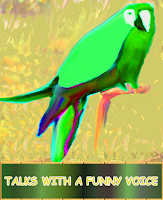 Screenshot of Talking Parrot