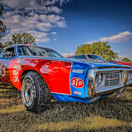 NASCAR Wannabe by Ron Meyers - Transportation Automobiles