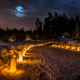 Luminaria Night by Joseph Law - News & Events World Events ( moon light, pathway, candlelight, trees, in memory, luminaria night, snows )
