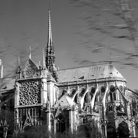 Notre Dame by Siân Oldfield - Buildings & Architecture Public & Historical (  )