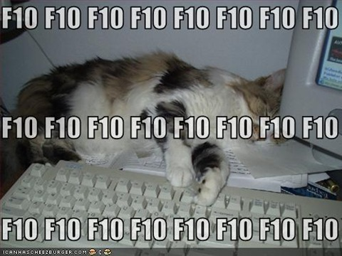 funny-pictures-cat-sleeping-f10-keyboard