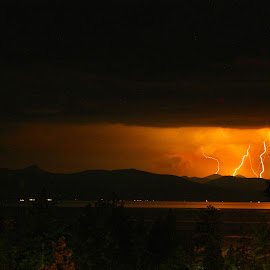 Four bolts by Trevor Fairbank - Landscapes Weather ( lightning, thunderstorm, pine tree, weather, landscape, light, lake tahoe, Lighting, moods, mood lighting )