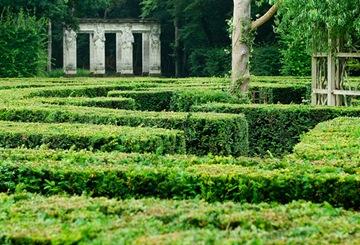 Château de Chenonceau-labyrinth