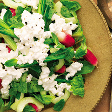 Grilled Spring Onions And Radish Salad With Cottage Cheese Recipe