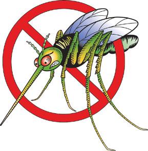 mosquito_color_index.jpg