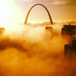 St. Louis Gateway Arch on a foggy morning by Doris Haynes Causey - Buildings & Architecture Statues & Monuments