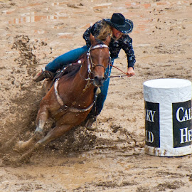 Muddy ride by Mike O'Connor - Animals Horses ( barrel racing, mud, horses, racing, fast, barrel, women,  )