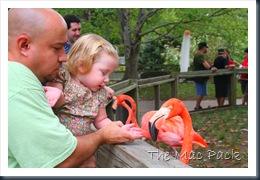 Trip to Birmingham Zoo (49)