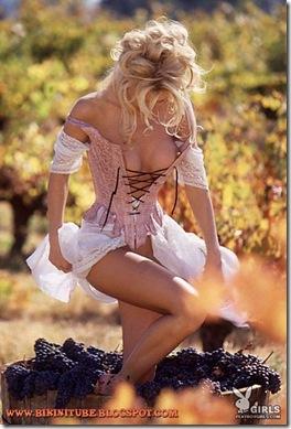 Brande-Roderick-Sexy-Playboy-playmate-