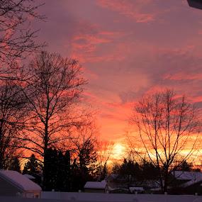 Winter Sunset by Peter Andrusyszyn - Landscapes Sunsets & Sunrises ( photo by pete andrusyszyn, winter, sunset )
