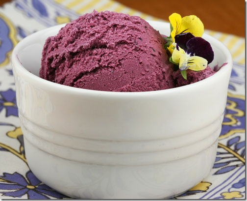 blueberryicecream1
