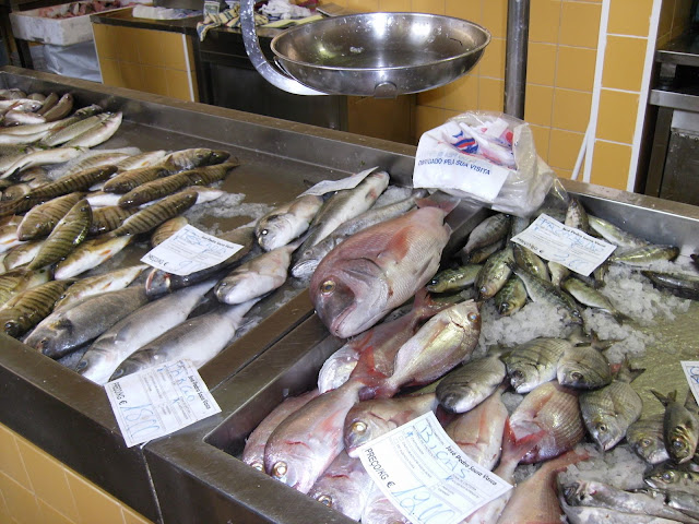 Just some of the vast array of fish available in Tavira's municiple market