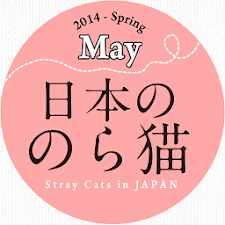 Stray Cats in JAPAN(2014.05)