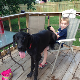 Wyatt sitting on Leo by Theresa Campbell - Novices Only Pets