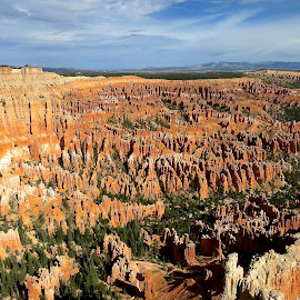 Bryce Canyon by Tyrell Heaton - Landscapes Deserts
