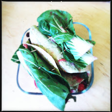 Raw Chard, Radish, Cashew and Lemon Ginger Wraps