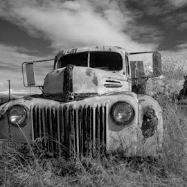 Old antique truck and barn. by Gale Perry - Transportation Automobiles (  )