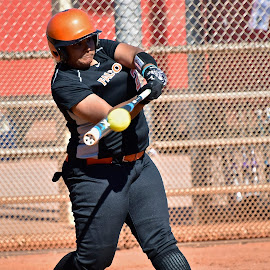 Home Run by Steven Aicinena - Sports & Fitness Other Sports