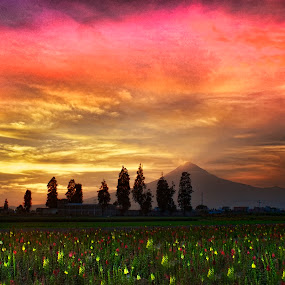 Sunset by Cristobal Garciaferro Rubio - Landscapes Sunsets & Sunrises