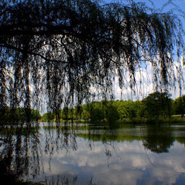 Water Reflections by Dougetta Nuneviller - Landscapes Cloud Formations ( #weepingwillow, #clouds, #sky, #reflections, #summer )