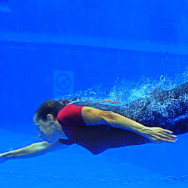 Diving by Ute Toschka - Sports & Fitness Swimming