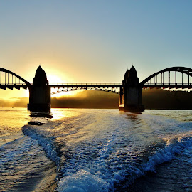 Sunset at the Bridge by Lori Pagel - Buildings & Architecture Bridges & Suspended Structures ( ride, water, reflection, boat ride, waves, architecture, boat, sunlight, coastal, coast, sun, clear sky, sky, fog, wake, sunset, siuslaw river, trees, bridge, wet, river )