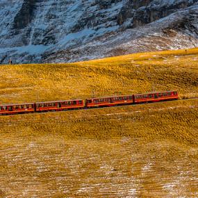 Trains by Kean Low - Transportation Trains